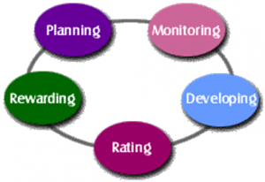 performance_management-300x206